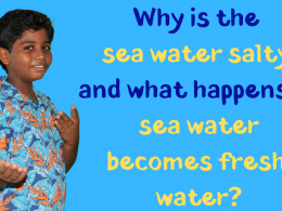 What will happen if all of the sea water becomes fresh water