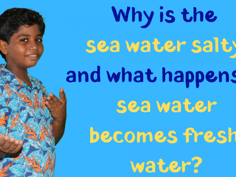 What-will-happen-if-all-of-the-sea-water-becomes-fresh-water