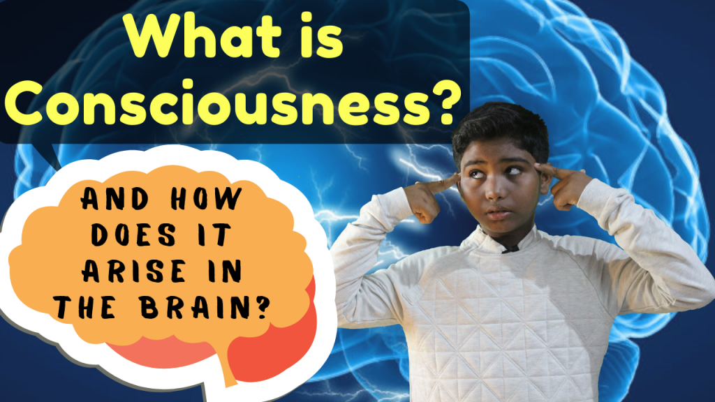 What is consciousness and how does it arise in the brain?