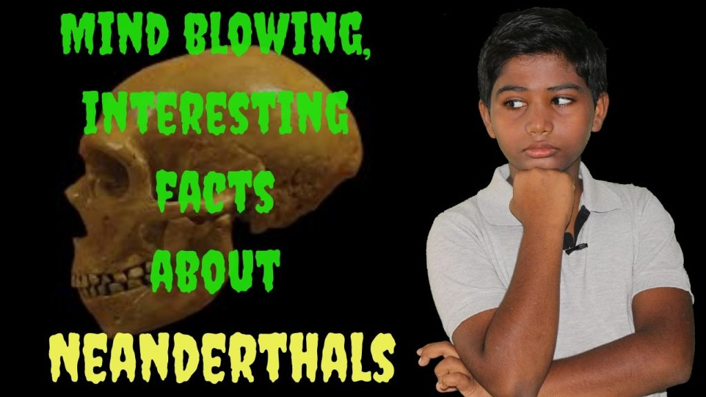 Mind blowing, interesting facts about Neanderthals