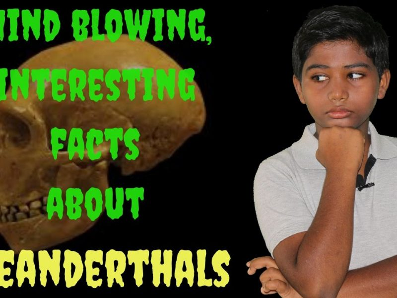 Mind-blowing-interesting-facts-about-Neanderthals