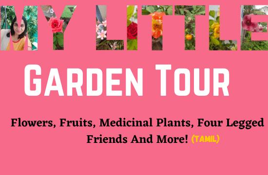 My-Little-Garden-Tour