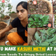 How-To-Make-Kasuri-Methi-At-Home