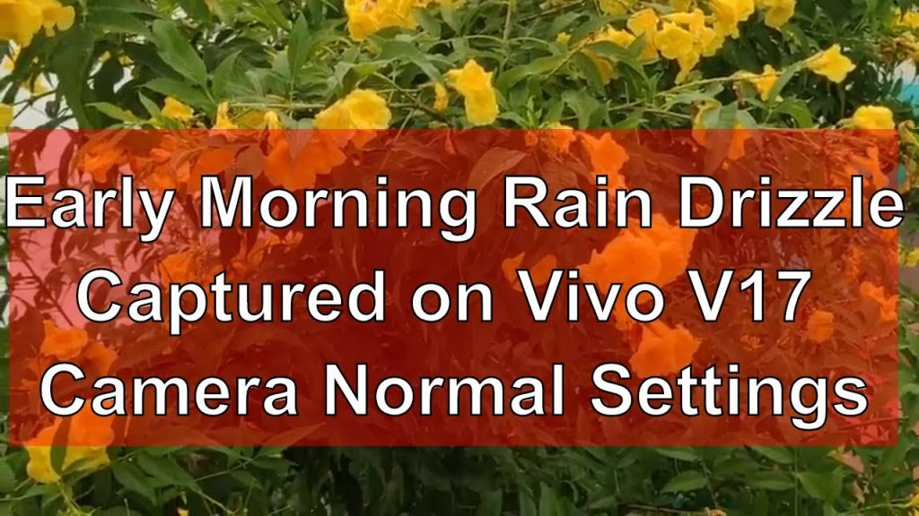 Vivo V17 Camera Test - Early Morning Rain Drizzle Captured on Vivo V17 Camera, Normal Settings
