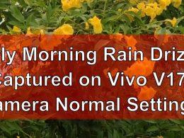 Vivo V17 Camera Test - Early Morning Rain Drizzle Captured on Vivo V17 Camera, Normal Settings