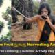 Palm-Tree-Fruit-Nungu-Harvesting-And-Eating
